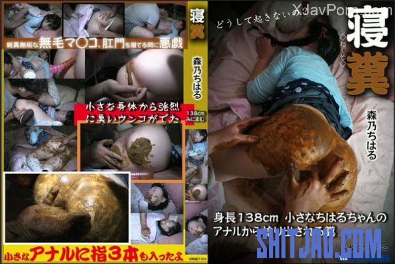 [VRNET-013] Feces Chiharu 最小スリーピング Urination Scat (2018/SD/1.60 GB) 137.VRNET-013