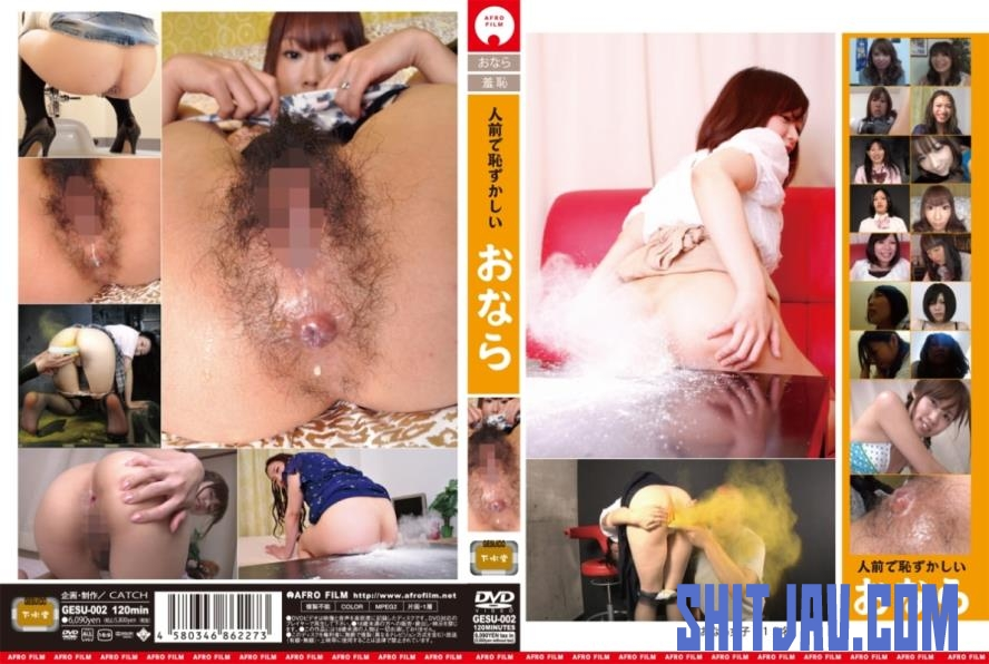 GESU-002 人前で恥ずかしいおなら Embarrassing Fart In Public (2019/SD/1.17 GB) 16.1383_GESU-002