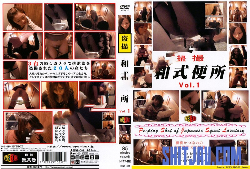 EBWB-01 スクワットトイレ盗撮 Defecation of a Japanese Woman in the Toilet (2019/SD/419 MB) 1.1712_EBWB-01