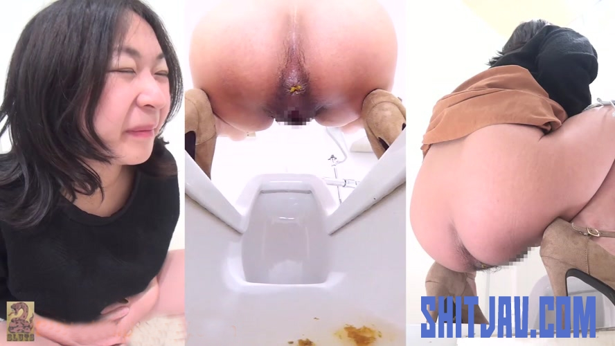 BFSR-182 Public Toilet Hidden Camera Watching Shit トイレでうんちする女性 (2019/FullHD/426 MB) 2.1790_BFSR-182