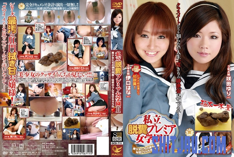 GCD-711 Other Humiliation Costume GIRL'S Garage Scat スカトロ (2019/SD/3.94 GB) 2.2061_GCD-711