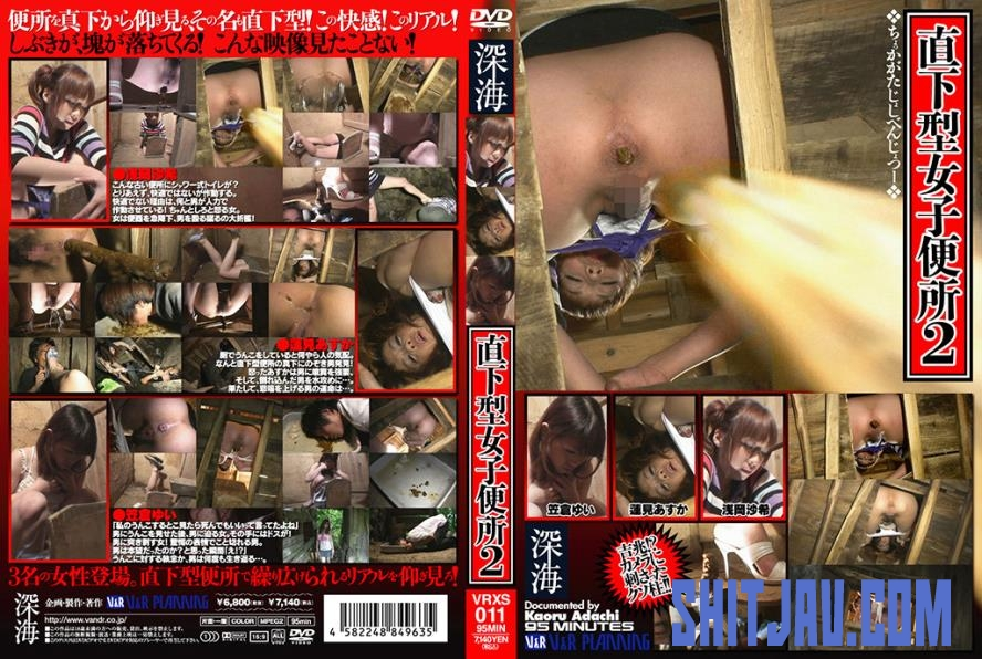 VRXS-011 二人の女性のトイレ震源地 Two Women's Toilet Epicentral (2020/SD/1.00 GB) 2.3713_VRXS-011