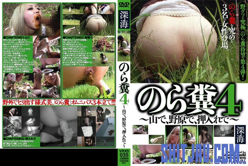 VRXS-035 To Stray Droppings In The Mountains, In The Field, – In The Closet (2020/SD/1.02 GB) 07.3784_VRXS-035